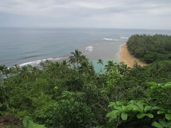 Napali-Coast_Kalalau-trail4.JPG