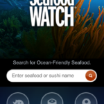 Healthy iPhone App Review: Seafood Watch