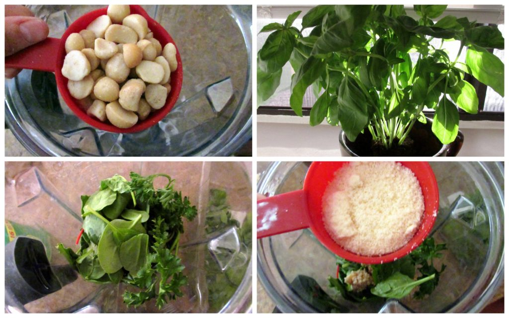 Herb Pesto Collage