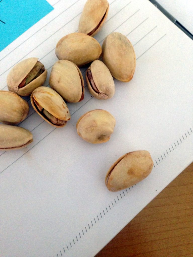 pistachios on notebook