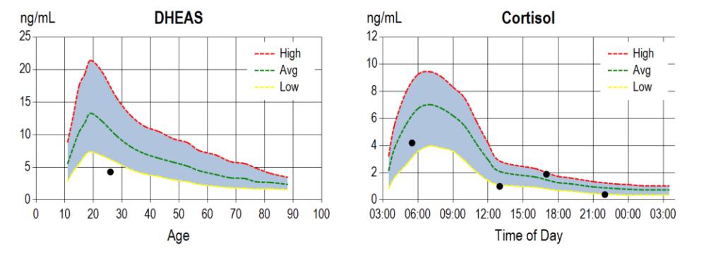 cortisol curve