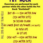 pet-rock-workout