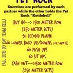 pet-rock-workout