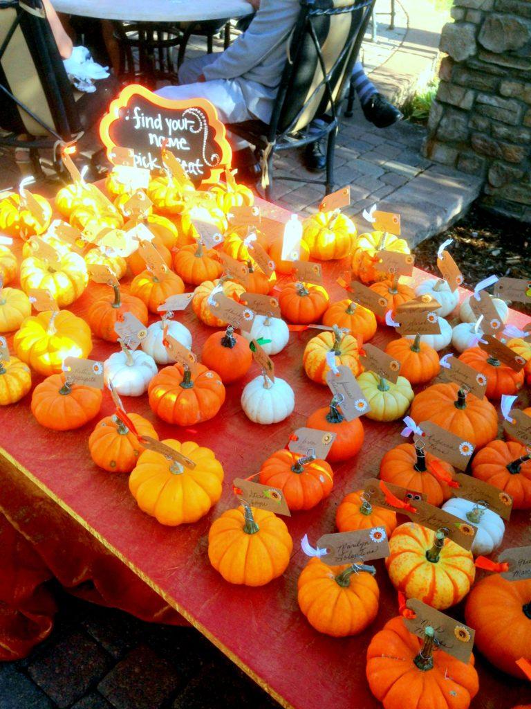 pumpkin seaters