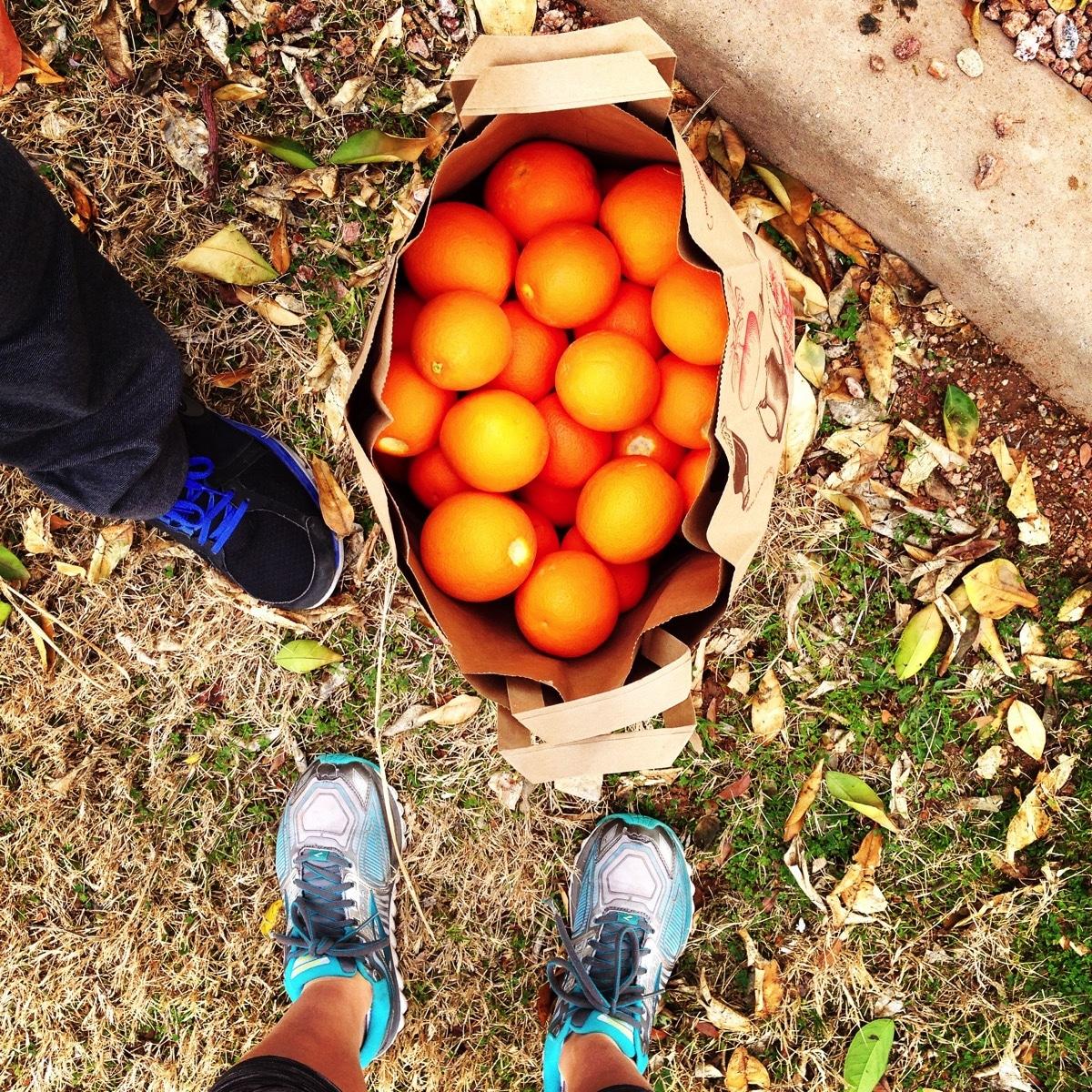 Oranges bag
