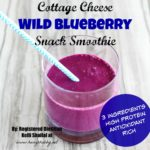 Wild Blueberry Snack Smoothie