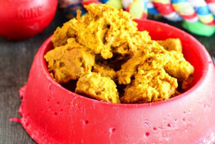 Nala Turns 1 – Homemade Dog Cookies