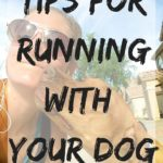 15 Tips For Running With A Dog