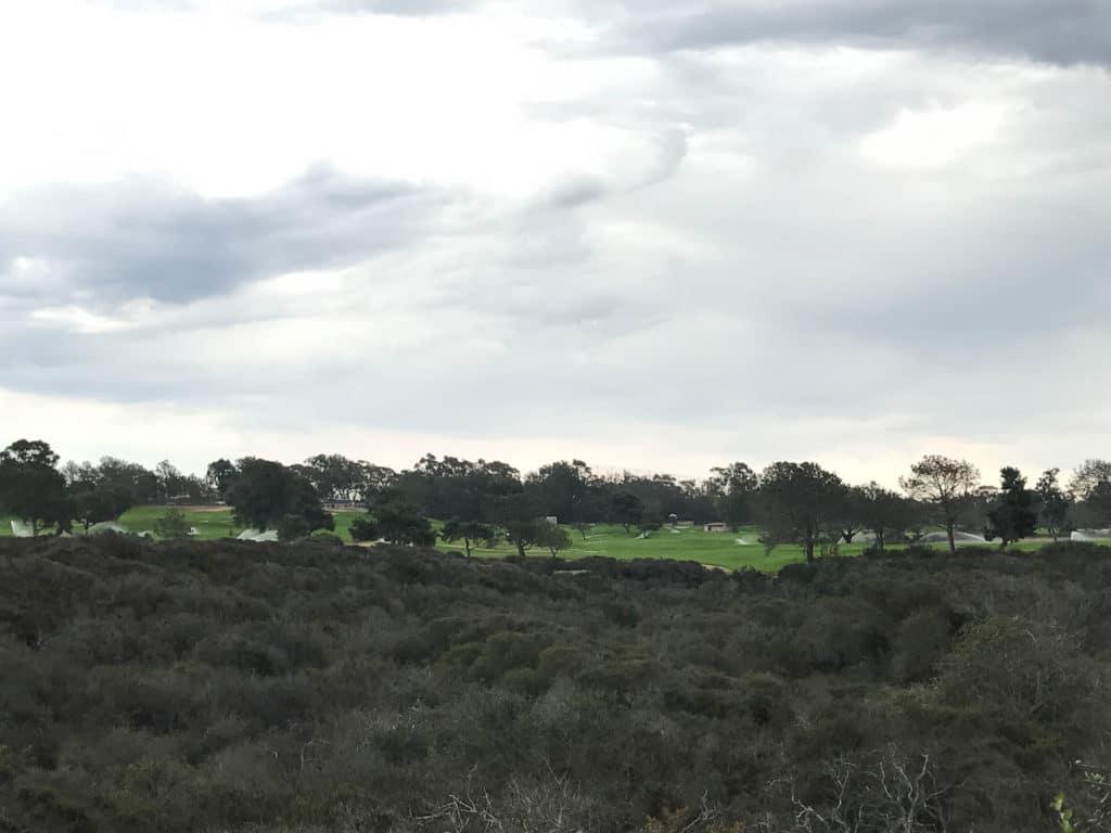 torres-pines