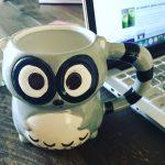 raccoon coffee cup