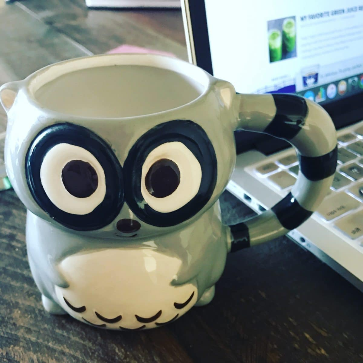 raccoon coffee cup