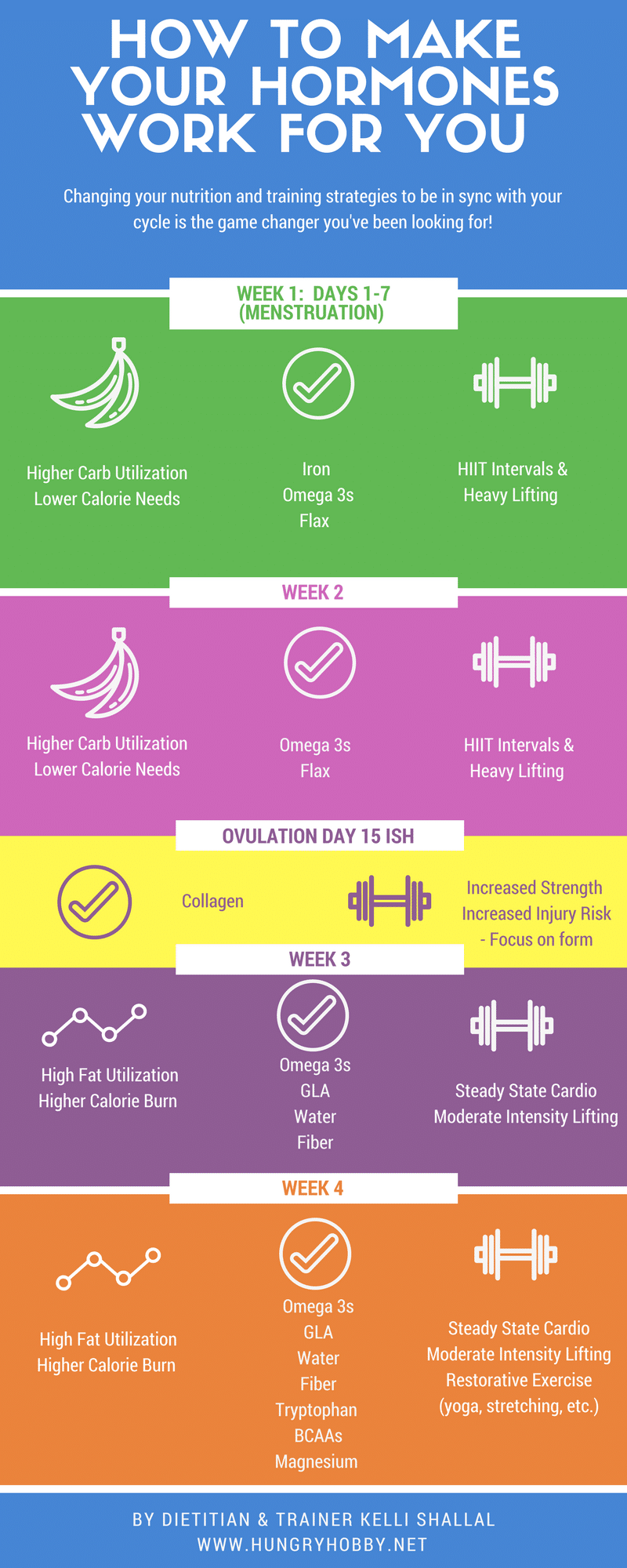 Menstrual Cycle Stages & Appetite, Training, Nutrition Tips