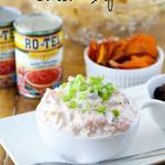 Tangy Creamy Salsa Dip