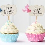 Boy or Girl? Weeks 14 & 15 Pregnancy Recap