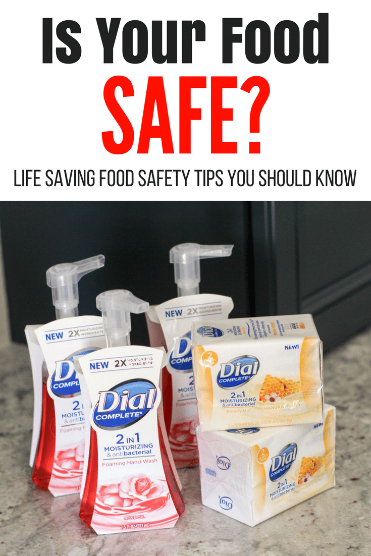 Food safety is a huge concern and despite eating every day, most people have never been trained in it.  Reduce your risk of sickness with these tips! #hungryhobby #sponsored #AD #Dial2in1 @dial #DialCompletesUs #2in1 #CollectiveBias @cvs