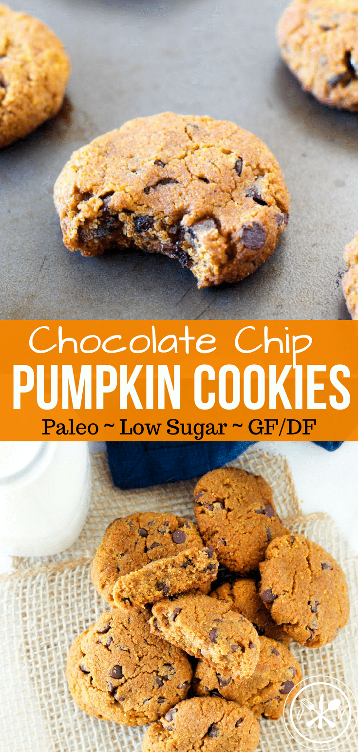 Warm paleo pumpkin cookies are bursting with mini chocolate chips in every bite! These cookies are the perfect healthy holiday treat for pumpkin season! #paleo #paleocookies #glutenfree #glutenfreecookies #dairyfree #dairyfreecookies #healthy #healthycookies #pumpkin #hungryhobby #healthydessert #dessert