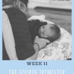 Fourth Trimester Week 11