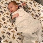 14 week old baby asleep nested bean zack