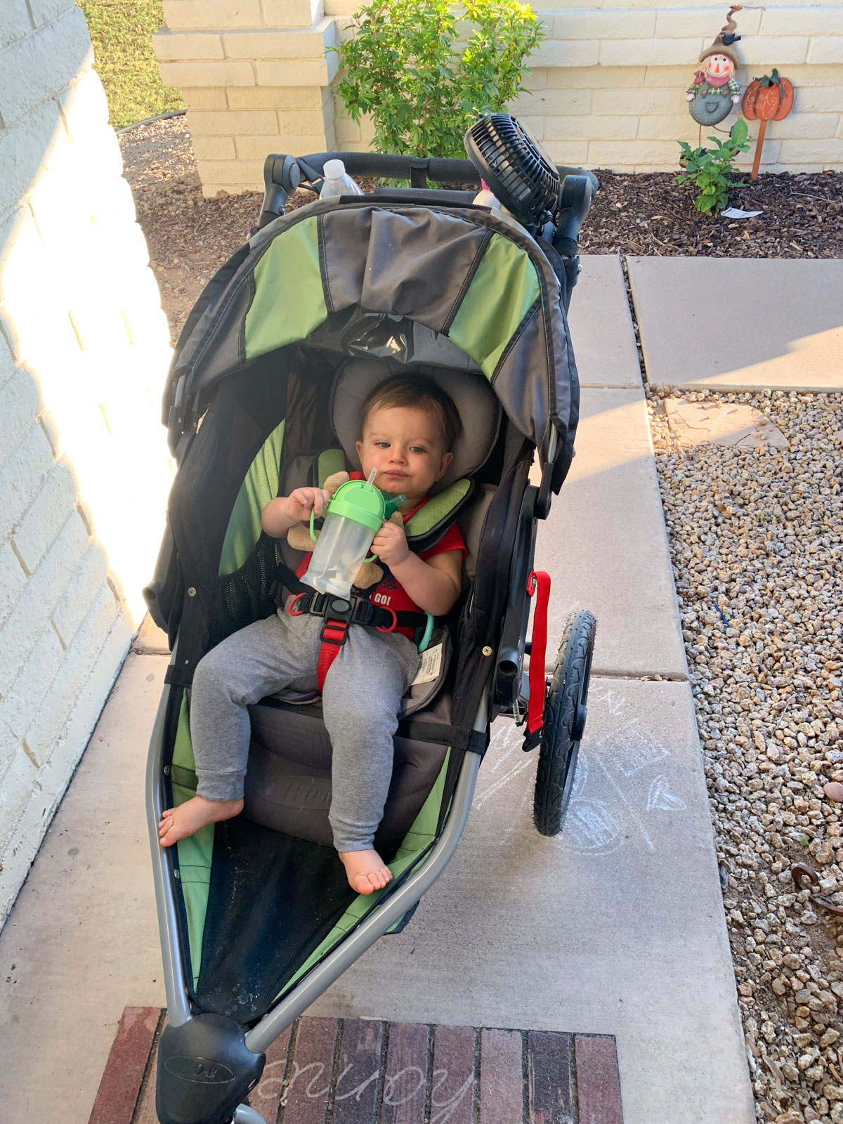 12 month old baby in stroller