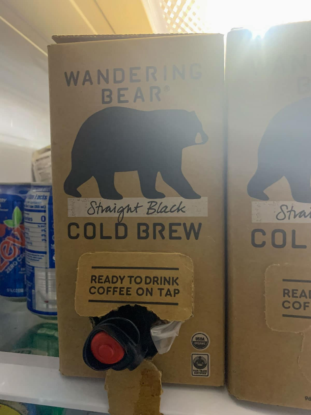 wandering bear cold brew container