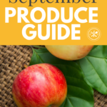 produe guide spetember graphic of apple