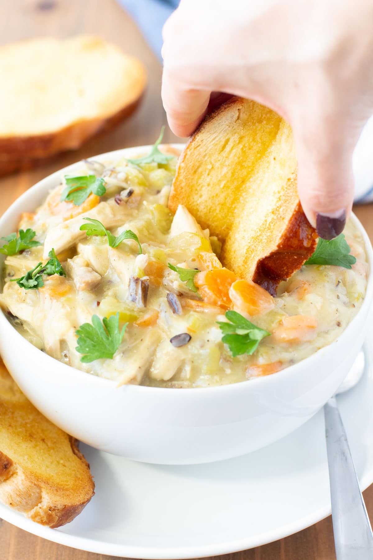 turkey and wild rice soup plus toasted bagette