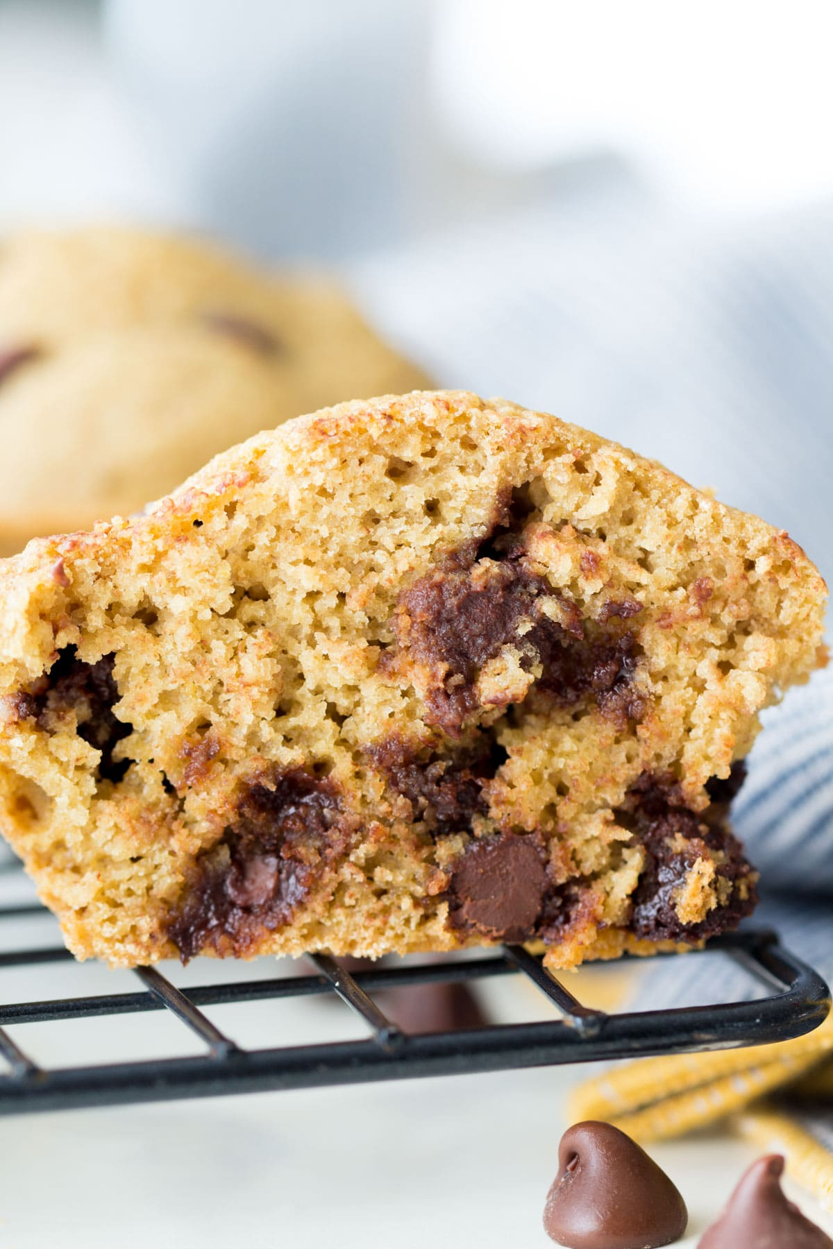 oat flour chocolate chip muffins